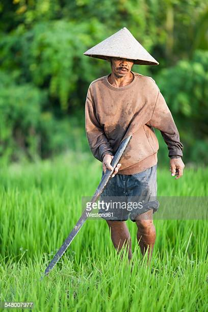 Indonesia, Bali, man working in the field