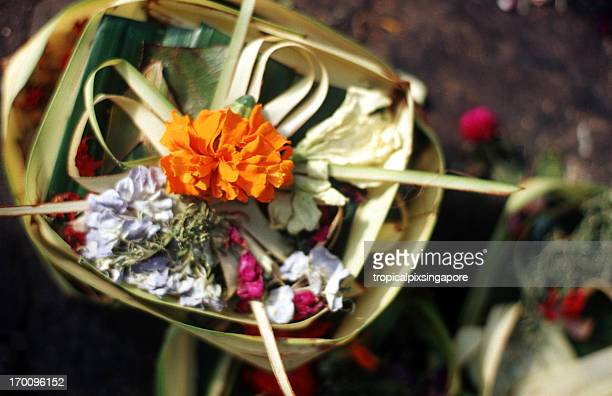 Indonesia, Bali, Ubud, canang sari offering tray.