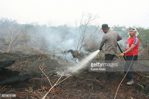 BENGKALIS Indonesia Firefighters spray water to put out a fire that has continued smoldering under peatland at an oil palm plantation in Bengkalis...
