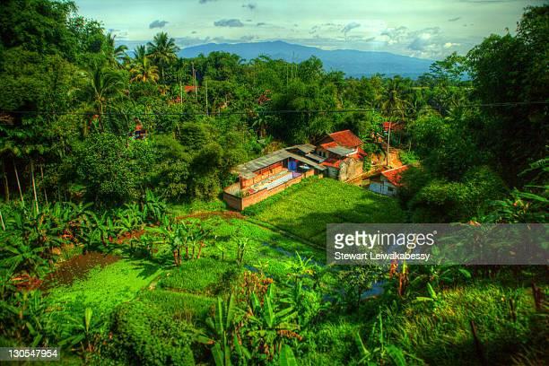 Indonesia - Java - Landscapes and Vistas