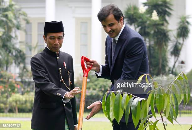 Indonesia President Joko Widodo gives a shovel to Qatar's Emir Sheikh Tamim bin Hamad alThani during a tree planting ceremony at the presidential...