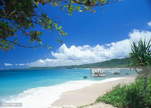 Indonesia, Sumba, tropical beach