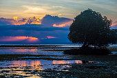 Indonesia, Sumbawa island at sunset
