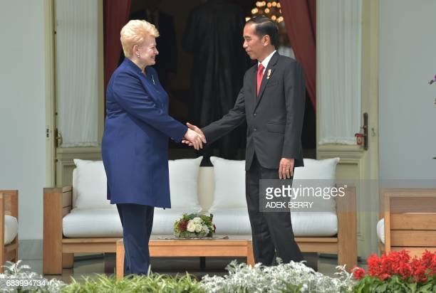 Indonesian President Joko Widodo shakes hand with Lithuanian President Dalia Grybauskaite during a visit at the presidential pallace in Jakarta on...