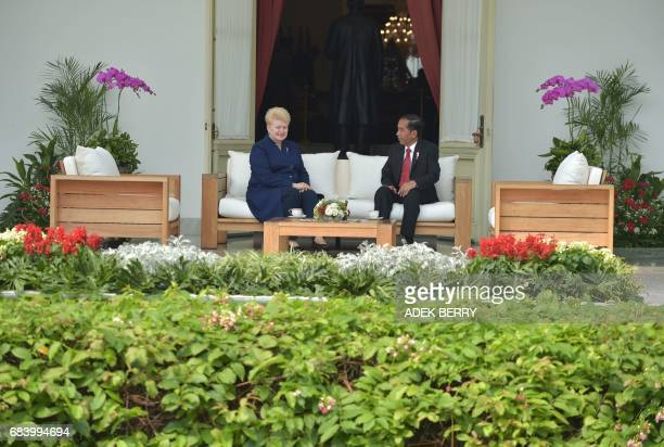 Indonesian President Joko Widodo speaks with Lithuanian President Dalia Grybauskaite during a visit at the presidential pallace in Jakarta on May 17...