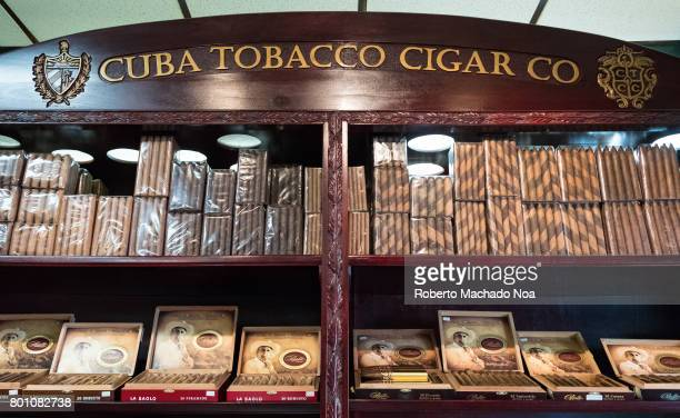 Indoor details of the Bello's Cigar Factory Different varieties of cigars on display on brown wooden shelf of a tobacco cigar company