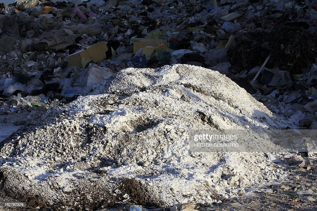 Infected chicken manure called 'gallinaza' in a garbage dump at Dolores Hidalgo, Guanajuato State, Mexico on February 26, 2013. The Mexican government declared a national animal health emergency in the states of Guanajuato, Jalisco and Aguascalientes, where so far 18 farms are infected and more than two million birds were killed. AFP PHOTO/Hector Guerrero