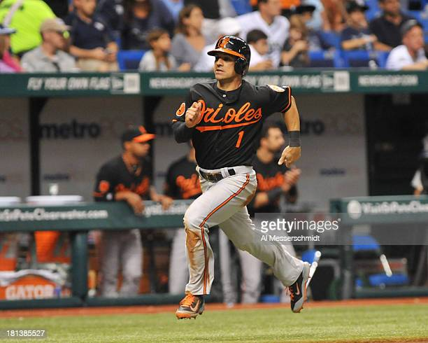 Infielder Brian Roberts of the Baltimore Orioles scores against the Tampa Bay Rays September 20 2013 at Tropicana Field in St Petersburg Florida