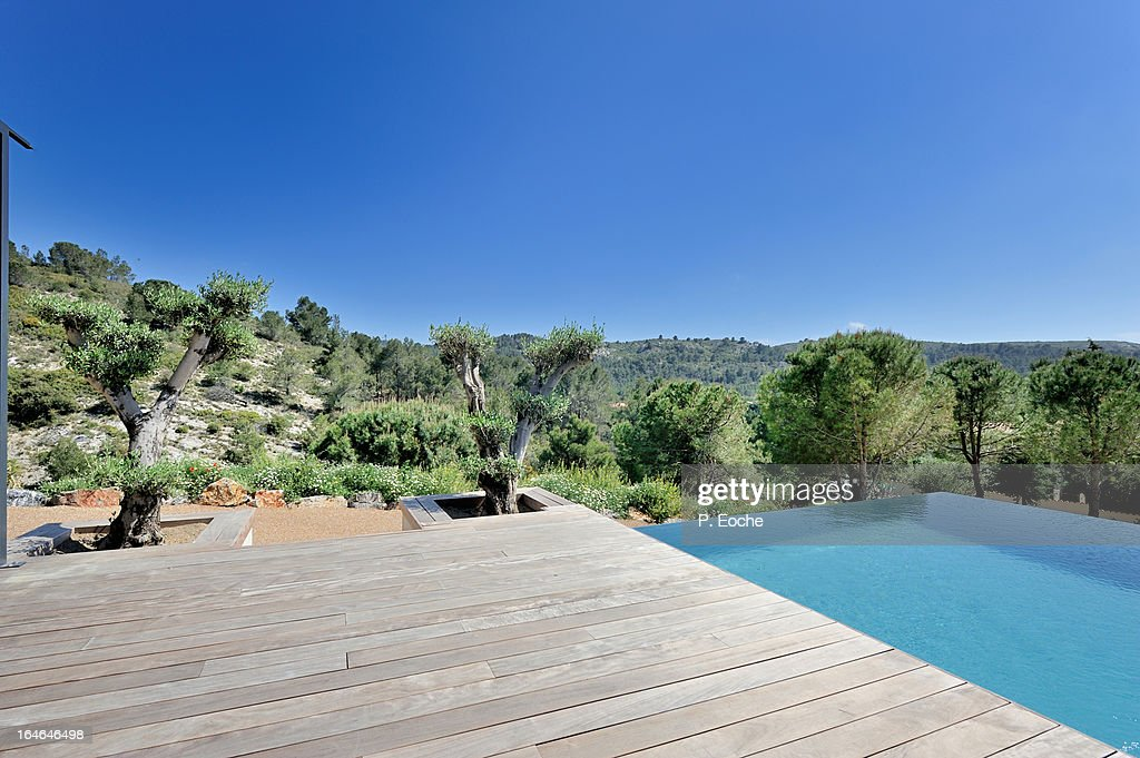 infinity pool amidst the garrigue, olive : Stock Photo