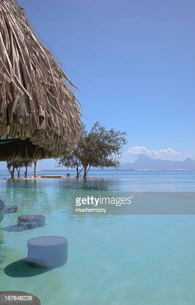 Infinity Pool in Tahiti with Swim Up Bar