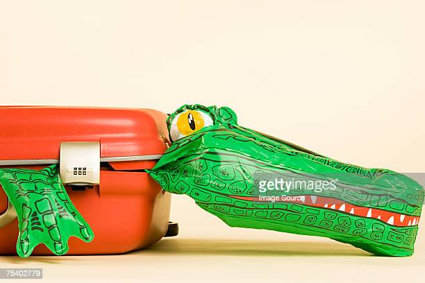 Inflatable crocodile in a suitcase
