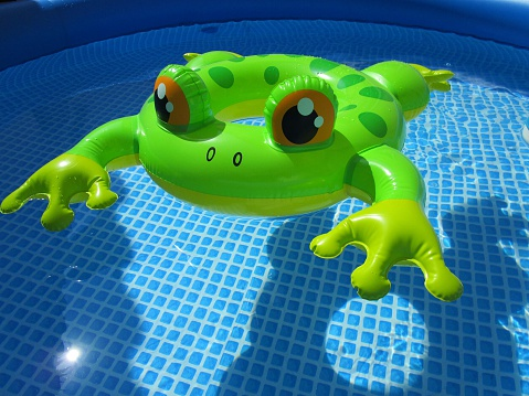 Toy Frog Stock Photos And Pictures Getty Images