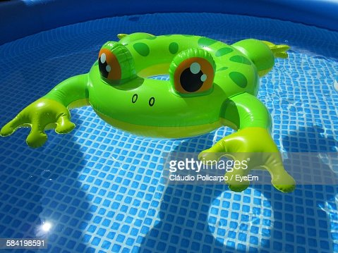 Inflatable Frog Toy Floating In Swimming Pool