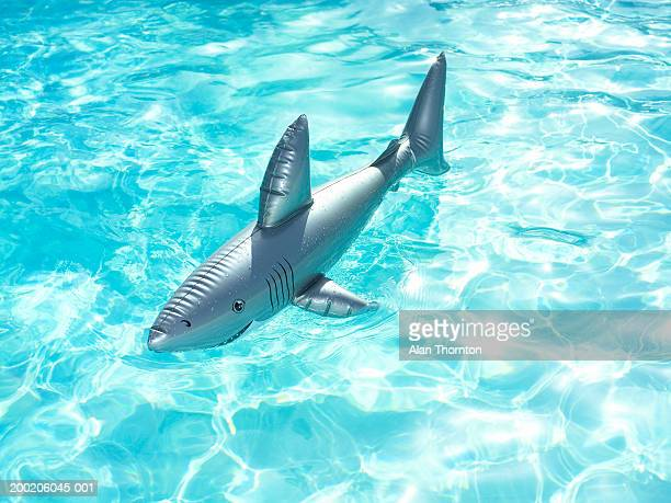 Toy Shark Stock Photos And Pictures Getty Images
