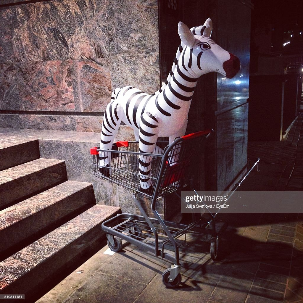 Inflatable zebra in shopping cart : Stock Photo