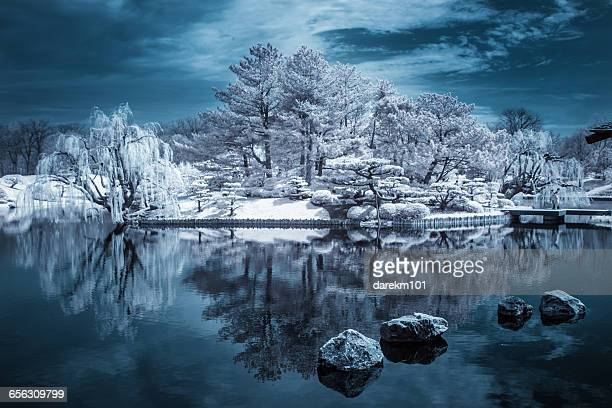 Infrared Forested Island reflected in lake, Illinois, America, USA