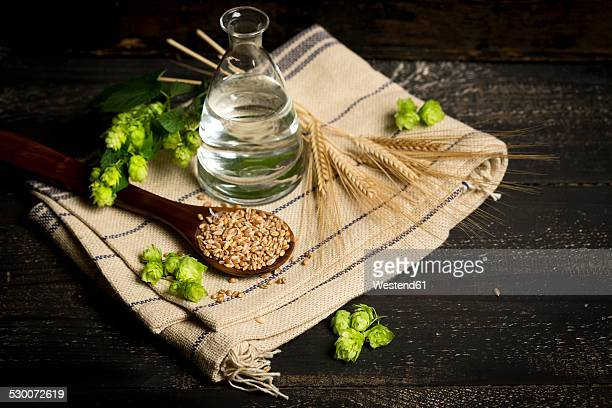 Ingredients for brewing beer, hops, water, barley
