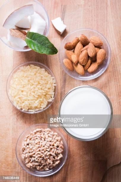 Ingredients for vegan milk; almonds, rice, spelt and coconut