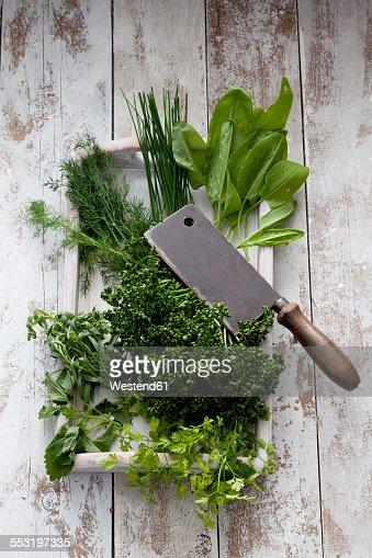 Ingredients of Frankfurt green sauce and cleaver