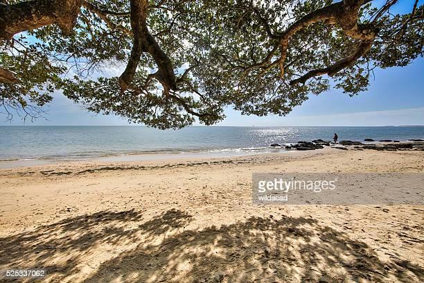 Ilha de Inhaca Moçambique