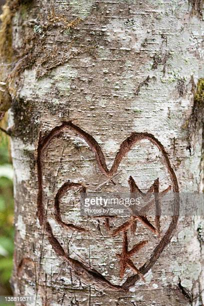 Initials on tree