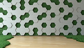Grassy room with hexagonal pattern and vertical garden on the wall. ( 3d render )