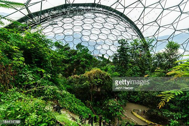 Inside Eden Project, Cornwall, UK.