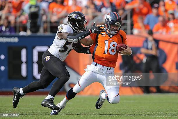 Inside linebacker CJ Mosley of the Baltimore Ravens sacks quarterback Peyton Manning of the Denver Broncos in the second quarter of a game at Sports...
