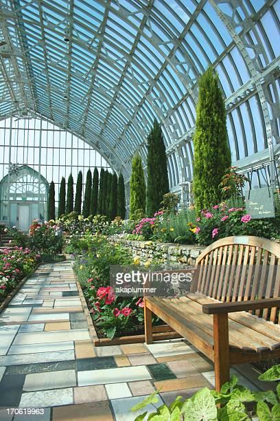 Inside Marjorie McNeely Conservatory, Saint Paul
