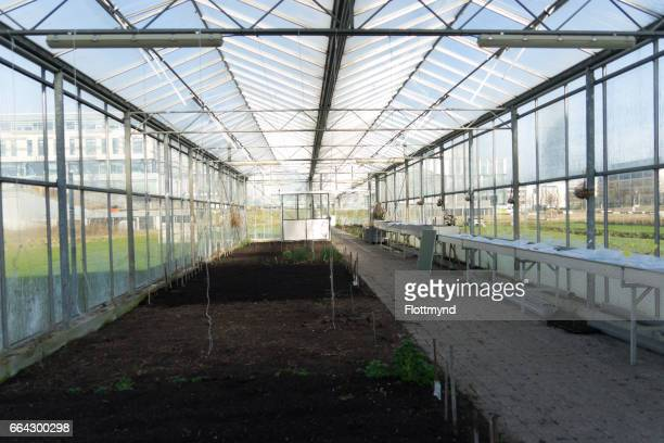 inside of a greenhouse