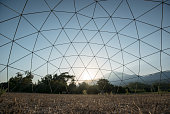 Geodesic dome in the middle of nature