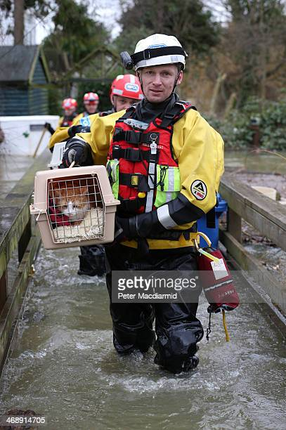 Inspector Alan Barnes of the RSPCA water rescue team evacuates a pet cat called Mac from a house in a flooded area next to the river Thames on...