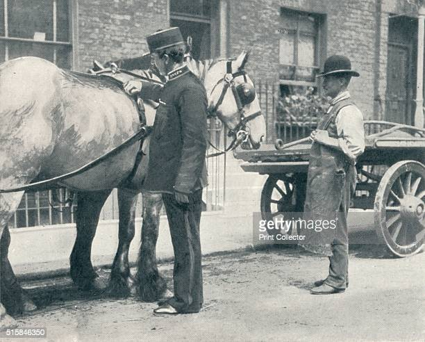 RSPCA inspector examining a horse circa 1903 The Royal Society for the Prevention of Cruelty to Animals was founded in 1824 at 7778 St Martin's Lane...