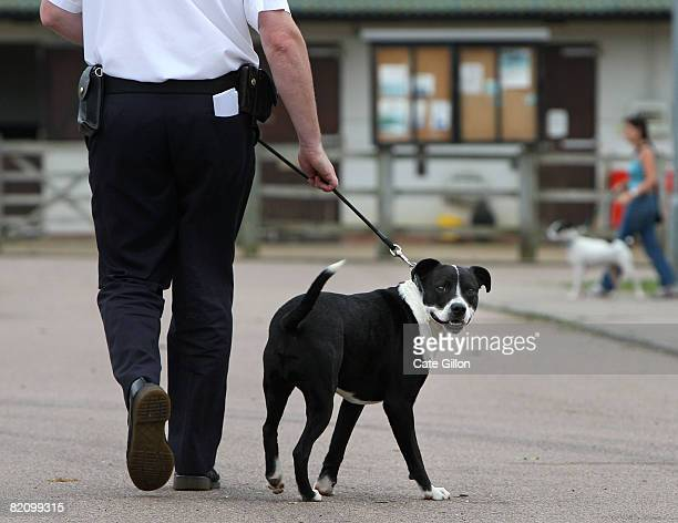 Inspector Simon Osborne takes collie crossbreed 'Warrier' for a walk at the Southridge Animal Centre on July 29 2008 in London England Warrier was...