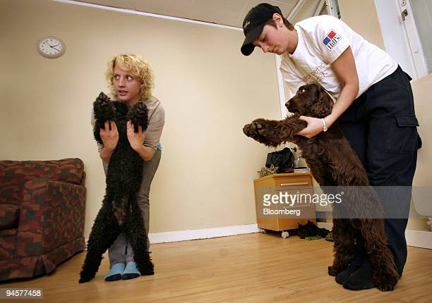 Instructor Linda Baumgart left with the poodle Mia and Jennifer Kling with cocker spaniel Thea during a yoga session for dogs at Dog Planet in...