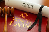 Inspector. Graphic logo is my artwork. Patent Number is fictitious. Thanks.     Red leather Intellectual Property Law book with with gold embossed type and iconic light bulb, ideas icon logo, with a j