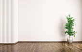Empty room interior background with plant 3d rendering