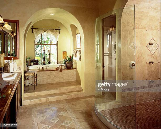 Interior of a luxury bathroom with stand up shower and tub