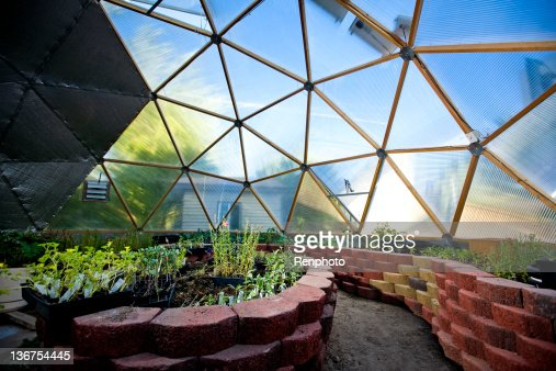 Interior of Beautiful Greenhouse Dome