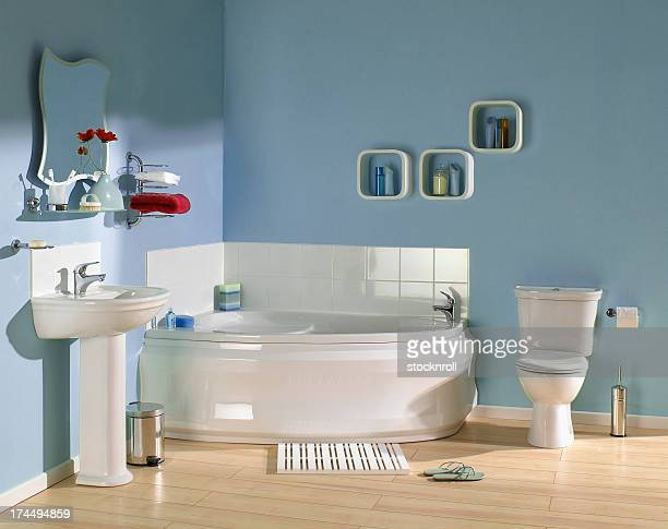Interior of Blue bathroom