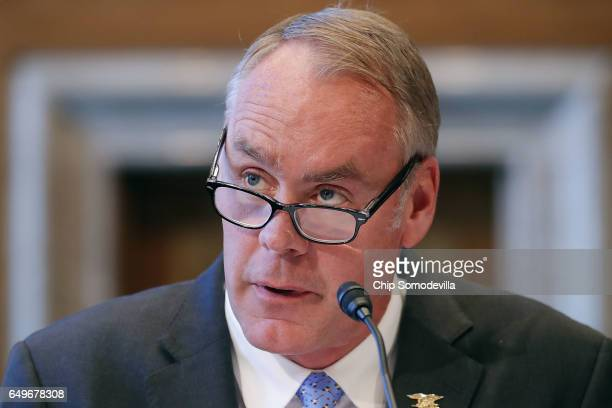 Interior Secretary Ryan Zinke testifies before the Senate Indian Affairs Committee in the Dirksen Senate Office Building on Capitol Hill March 8 2017...