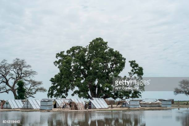 TOPSHOT InternallyDisplaced Peoples tents stand next to a pool of water created by heavy rains the night before in Rann in northeast of Nigeria close...