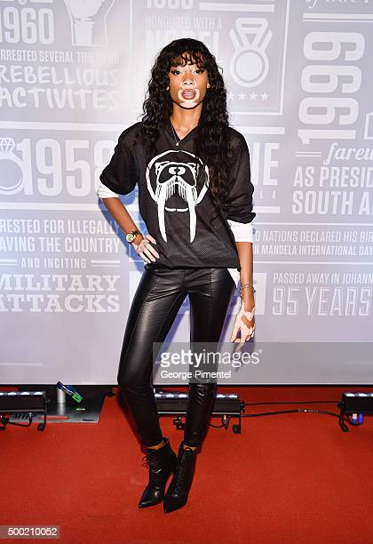 International model Winnie Harlow attends the 2nd Annual Giant of Africa event held at Air Canada Centre on December 5 2015 in Toronto Canada