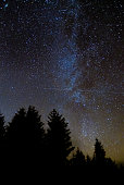 Relatively clear view of the galaxy with coniferous forest silhouette in foreground, in Brecon Beacons National Park, Wales, UK