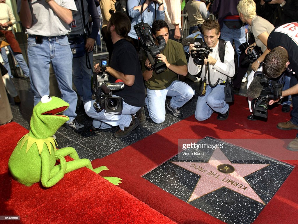kermit the frog joins the hollywood walk of fame getty