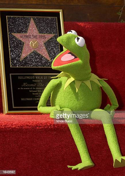 International television and movie star Kermit the Frog poses with a replica plaque during a ceremony honoring the famous puppet with a star on the...