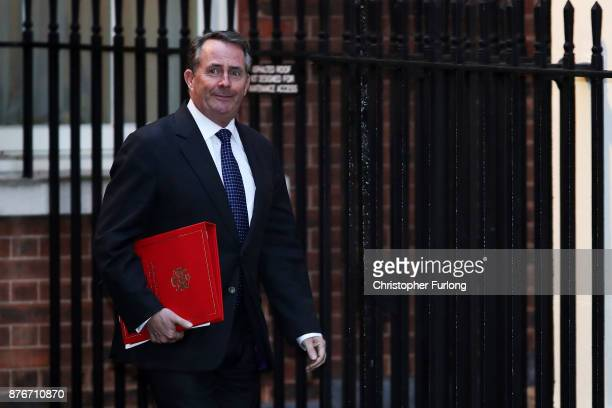 International Trade Secretary Liam Fox arrives at Downing Street for the Inner Brexit Cabinet meeting on November 20 2017 in London England Prime...