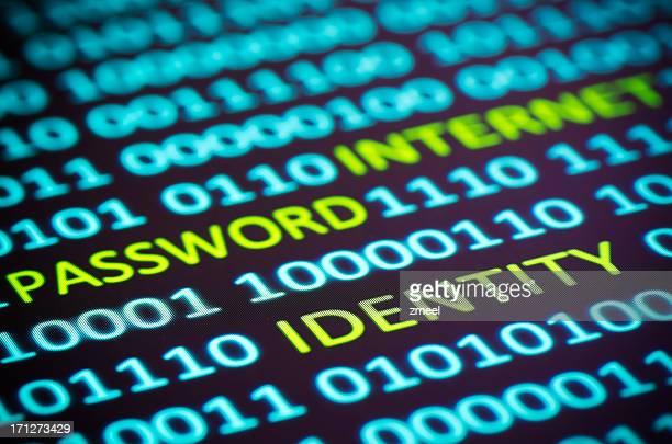 Internet identity