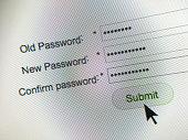 Closeup of a password change process on a computer screen.