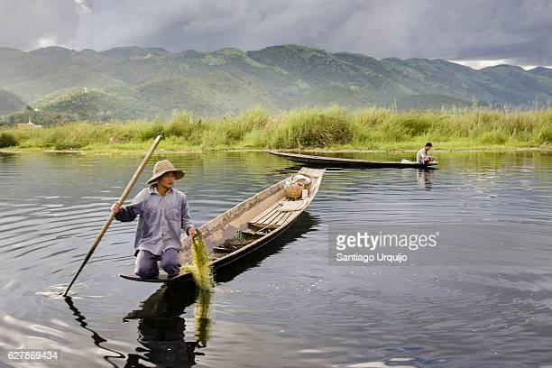 Intha fishermen casting a fishing net in Inle Lake